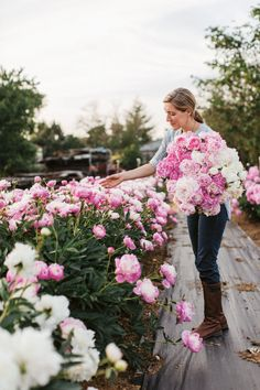 """Peonies Are the Ultimate """"Queen of Spring"""" Flower"""