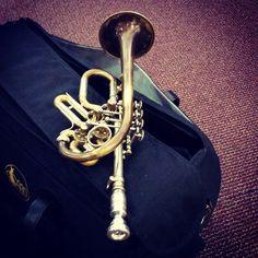 Brass Musical Instruments, Brass Instrument, Hammond Organ, Trumpet Players, French Horn, Lonely Heart, Sound Of Music, Music Stuff, Musicals