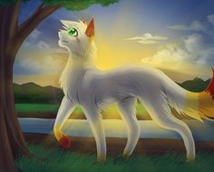 Firepaw, a young tom. He was very handsome, and lots of shecats liked him. He loved Streampaw, and they died together in the battle of DawnClan and LightningClan.