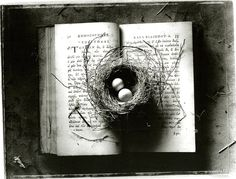 "Sean Kernan, ""The Secret Books"""
