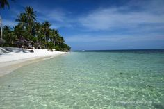 Guide to Accommodation and Resorts in Anda Bohol Philippines Bohol Philippines, Beautiful Places In The World, Beach Resorts, Places To Go, Water, Travel, Outdoor, Gripe Water, Outdoors