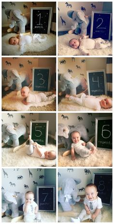 How to create a monthly growth photo for your baby . - How to create a monthly growth photo for your baby # growth photo - Baby Bump Pictures, Milestone Pictures, Newborn Pictures, Baby Growth Pictures, Newborn Elephant, Monthly Baby Photos, Foto Baby, Newborn Baby Photography, Baby Milestones
