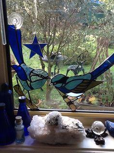 Love my blue wrens