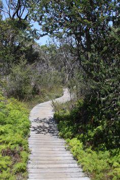 Freycinet National Park : Wineglass Bay - 16 février 2015