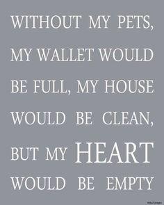 Pets... They steal your heart  www.professionalpetsittersinc.com
