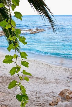 Top 10 Paradise Beaches In Greece
