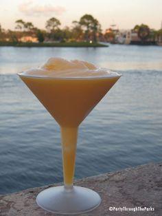 Grand Marnier & Grey Goose Orange Slush....just like they serve at Epcot!