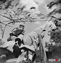 Un artilleur d'un régiment d'artillerie d'Afrique met en position de tir un canon de 155 mm GPF (grande puissance Filloux) dans la région de Zaghouan. Prenant part à la campagne de Tunisie au sein du XIXe corps d'armée, il participe à l'offensive et à la poussée vers Zaghouan au début de mai 1943. Le canon est dénommé « L'impossible » d'après une autre photographie du reportage.
