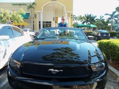 Prejudice is about forming an opinion before you become aware of the relevant fact.  Many people may have thought that my family owned a black mustang convertible when actually we had to rent it in Florida because our car broke down. This was discussed in chapter 8.