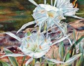 Spider Lily floral flower signed pastel art painting print by Donna Pellegata
