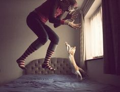 meow meow jump jump!