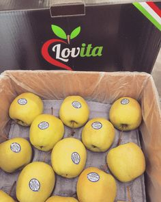 First Lovita trip to Canada... #EnjoyFruit #ByDelBello #Lovita #ItalianFlavour #TasteMe #LadyApple #FromItalyWithLove #EatItalian #WeAreComing #WeAreReady #FruitLover #instafood #PremiumQuality #GoldenDelicious #ApplesGoldenDelicious #apples #amazing #mangiamela #melamangio #EatHealthy #fruit #food #LoveNature #gnam #foodporn #fruitporn #Canada