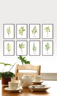 Kitchen / Dining room... art... Watercolor Herb art Set of 8  5x7 Kitchen art  by colorZen