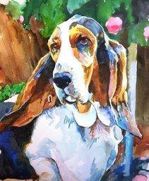 CANINE PORTRAITURE By Jessica Graca