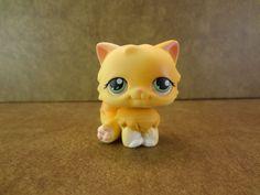 #217 Persian Cat 2004