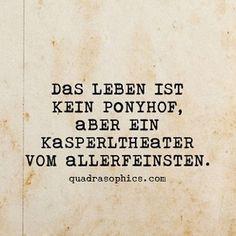 #Quadrasophics #düsseldorf #ponyhof #berlin #geschenke #geschenkideen #geschenkartikel