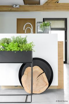 ferm LIVING Plant box - perfect as storage in any room. Even in the kitchen for… Plant Box, Aquaponics, Kitchen Styling, Cozy House, Kitchen Dining, Planter Pots, New Homes, Herbs, Interior Design