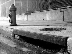 Will snow guards protect my rain gutters? Rain Gutter Cleaning, Sidewalk, Snow, Outdoor Decor, Del Mar, Side Walkway, Walkway, Walkways, Eyes