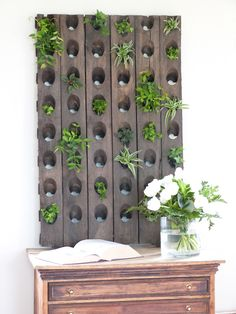 Mur végétal casiers à vin