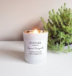 Luxe Medium scented 100% soy wax tumbler candle, 180g, 16 fragrances Scented Candles, Candle Jars, Australian Gifts, Candied Pecans, Fresh Coffee, Lemon Grass, Wax Melts, Fragrance Oil, Fragrances