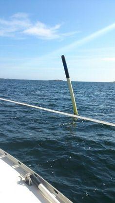 Merillä Suomessa