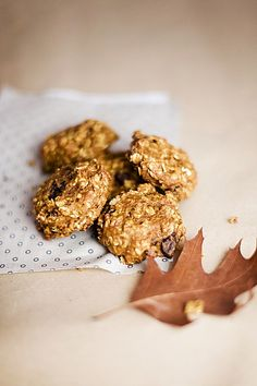 Kürbis Chocolate Chip Haferflocken Cookies, ein sehr leckeres Rezept aus der Kategorie Vegan. Bewertungen: 2. Durchschnitt: Ø 3,5.