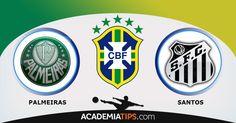 Palmeiras x Santos, acompanhe todas as apostas esportivas do campeonato brasileiro na Academia de Tips, Palmeiras, Santos, Cruzeiro, Botafogo, Flamengo...
