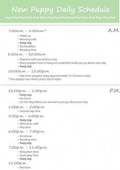 Puppy Training: Printable New Puppy Daily Schedule – Sam ma Dog Training Puppy Schedule, Puppy Training Schedule, Training Your Puppy, Dog Training Tips, Potty Training, Training Classes, Agility Training, Dog Agility, New Puppy Checklist