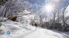 According to @newscomauHQ Mt Buller has Australia's best cruisy skiing and steepest runs! What do you think?