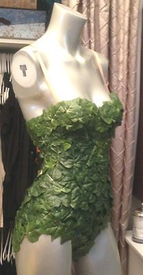 Sexy Corsette Poison Ivy Costume Poisin Batman Womens Halloween Costume Green | eBay