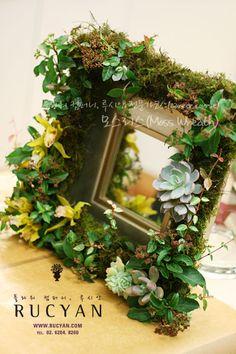 모스리스, 이끼리스(Moss Wreath)_[플라워스쿨,루시안]전문가반플라워레슨 :: 네이버 블로그