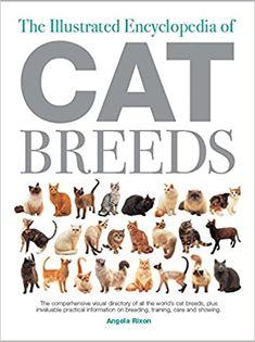 World Cat, Dog Books, Cat Breeds, Book Lovers, Author, Education, Pets, Illustration, Animals