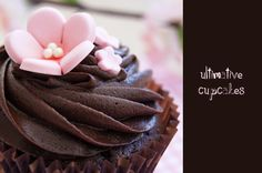 Ultimative Cupcakes