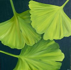 Gunkgo Leaves; oil on canvas by Gorica Bulcock