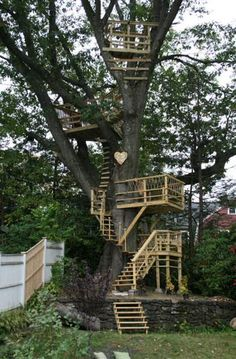 This is amazing, not really a tree-house, more like tree balconies or platforms or something.