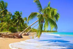 Onde ficar em São Miguel dos Milagres Tropical Beaches, Vacation Places, Travel Essentials, Outdoor Furniture, Outdoor Decor, Beautiful Pictures, Island, World, Maria Clara