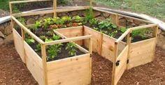 11 Awesome U-Shaped Raised Garden Bed Ideas - http://www.homesteadingfreedom.com/11-awesome-u-shaped-raised-garden-bed-ideas/