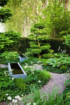 Chelsea 08 The Laurent-Perrier Garden.  For daily landscaping pinspiration, follow http://pinterest.com/pmartinza
