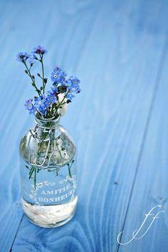 (via forget me nots | blauwe bloemen | Pinterest)