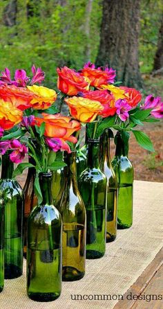 Roses in wine bottles