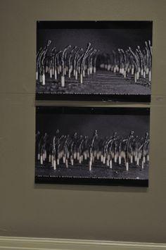 Match Stick Forest, Wesam Mazhar Haddad, Jordan