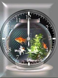 Fish tank clock - cute idea if it has a filter, but too small for goldfish Aquarium Design, Aquarium Ideas, Unusual Clocks, Cool Clocks, Saltwater Aquarium, Aquarium Fish Tank, Betta, Aquarium Original, Cool Fish Tanks