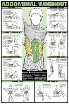 For those of you about to lift things up and put them down - Imgur Healthy Diet Plans, Abdominal Workout, Abdominal Exercises, Back Exercises, Fitness Exercises, Running Workouts, Gym Workouts For Men, Core Workouts, Health And Fitness Tips