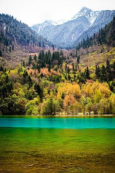 Jiuzhaigou Valley, in North Sichuan, China* China paper dolls for free at The China Adventures of Arielle Gabriel, also Hong Kong stories at The Goddess of Mercy & The Dept of Miracles, a memoir of financial disasters and spiritual miracles in China *