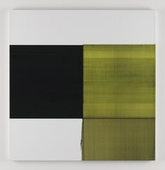 Callum Innes - Artists - Kerlin Gallery