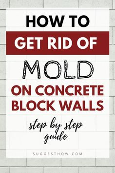 Molds do not only give an unpleasant look to your home but also is hazardous to health. To get rid off mold, you will need some necessary tools, but the process can be quite time-consuming. Here is how to get rid of mold on concrete block walls from the bathroom, kitchen, living room, or basement. #homemaintenance #diy #cleaning #homehacks Household Cleaning Tips, Deep Cleaning Tips, Cleaning Walls, Bathroom Cleaning, Get Rid Of Mold, How To Get Rid, How To Remove, Concrete Block Walls, Concrete Wall