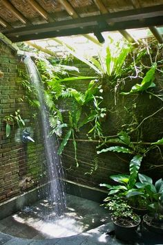 Tree Bungalow in Bali I love to shower outdoors with the sun shining down upon me. Love the plants in this outdoor shower too! Tree Bungalow in Bali I love to shower outdoors with the sun shining down upon me. Love the plants in this outdoor shower too! Outdoor Baths, Outdoor Bathrooms, Indoor Outdoor, Outdoor Plants, Plants Indoor, Rustic Outdoor, Outdoor Pool, Diy Garden, Home And Garden