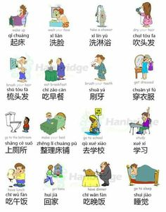 Daily Routine in Chinese Chinese Phrases, Chinese Words, Chinese Writing, Mandarin Lessons, Learn Mandarin, Chinese Language, Japanese Language, Chinese Flashcards, Chinese Dictionary