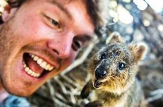 #happyquokkamonday.