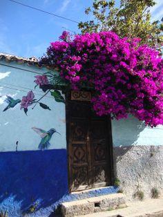 En el antiguo México, antes de la invasión española, se creía que cuando los guerreros morían en combate, sus almas se transformaban en colibríes que acompañaban al sol desde el amanecer hasta el medio día. Huitzilipochtli, dios de la guerra, significa colibrí zurdo. Huitzihuitl significa plumas de colibrí, y es el segundo nombre del emperador de MéxicoTenochtitlán. Los guerreros usaban las plumas de los colibríes para adornarse, pegándolas con cera de Campeche. Los poetas Aztecas cantaron…